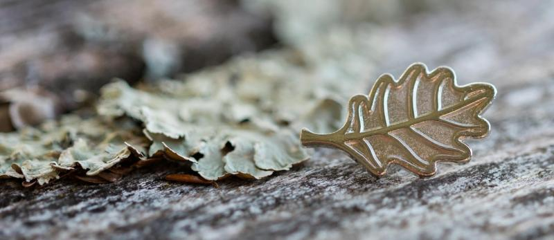 A Arbor Award pin, shaped like an oak leaf, rests on a lichen-covered log.