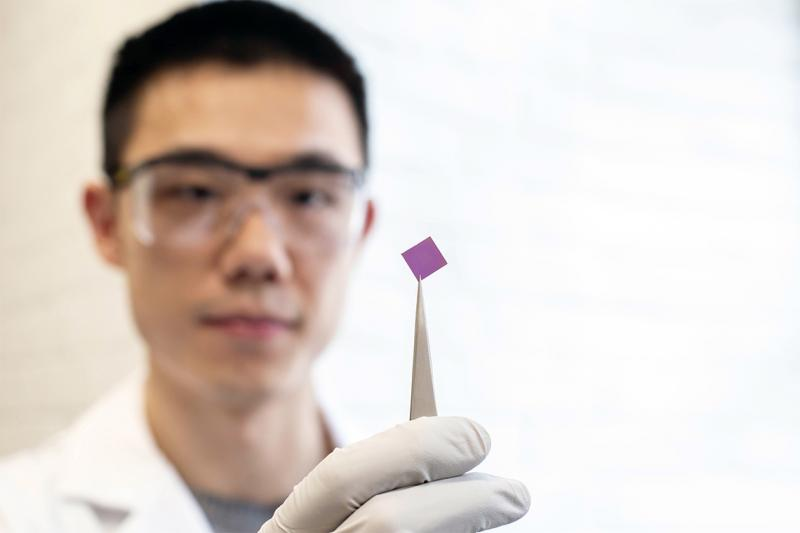 Teng Cui uses tweezers to hold up a half-centimetre-square silicon chip.