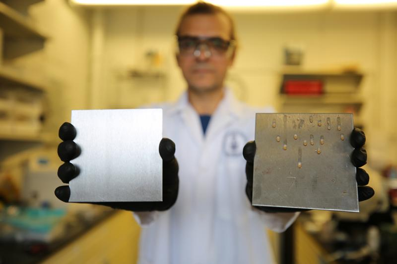 U of T researcher Tarek Awad shows two samples: a stainless steel surface treated to trap simple cooking oil (left) and an uncoated surface (photo by Liz Do)