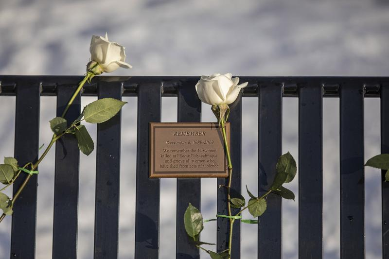 Two fresh roses frame a plaque reading: Remember, installed on the back of a metal bench.