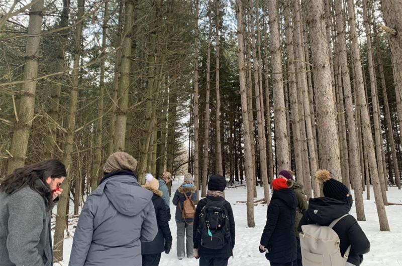 A group of kids and adults explore a snowy forest.