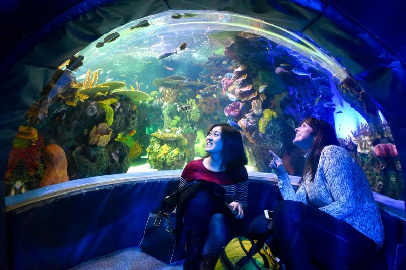 Two young women look up and laugh in front of an enormous aquarium filled with corals and tropical fish. Photo by Ken Jones