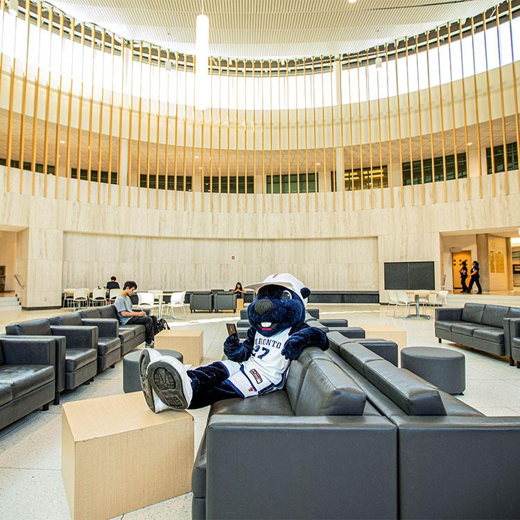 The True Blue mascot relaxes in an armchair in a stone-and-wood rotunda with high ceilings.