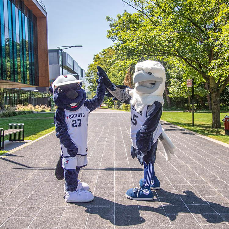 The True Blue mascot and the UTM Eagle mascot high five each other on a paved pedestrian walkway.