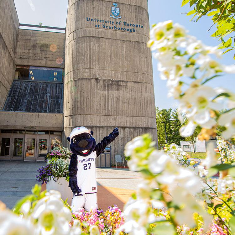 Standing amidt flowering planters, the True Blue mascot points up at the U of T Scarborough logo on a concrete tower.