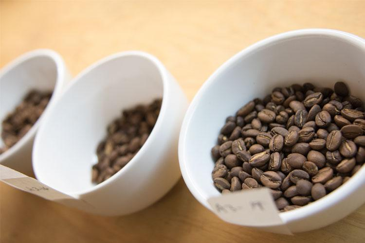 Samples of coffee beans from different parts of the roasting process (photo by Romi Levine)