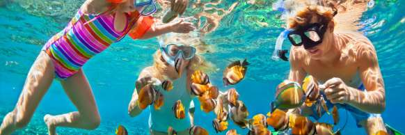 Family Snorkeling in the Ocean