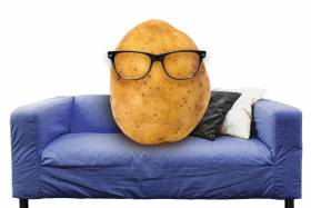 A potato with large glasses sitting on a couch.