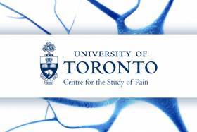 U of T Centre for Pain logo over blue and white background
