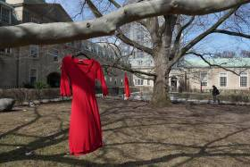 Red dresses, symbolizing missing and murdered Indigenous women and girls, decorate trees in a grassy courtyard at U of T.