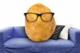 Potato on a blue coach wearing glasses